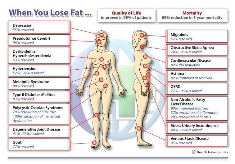 lose-fat1